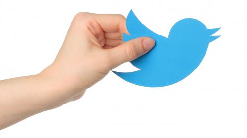 The Morality of Immoral Tweets