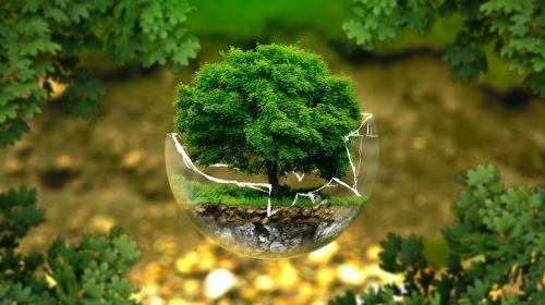 Plädoyer für eine nachhaltige und zukunftsorientierte Agentur