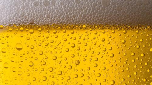Estudio: Análisis Digital de Cerveceras durante la Covid-19