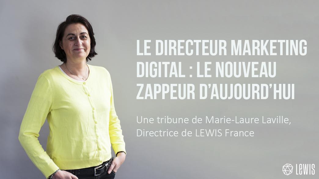 ML zappeur directeur marketing digital