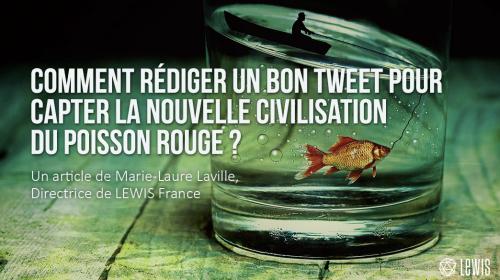 Comment rédiger un bon tweet pour capter la nouvelle civilisation du poisson rouge ?