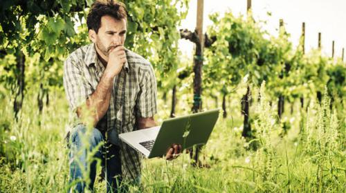 Wine communication: il costume diventa business