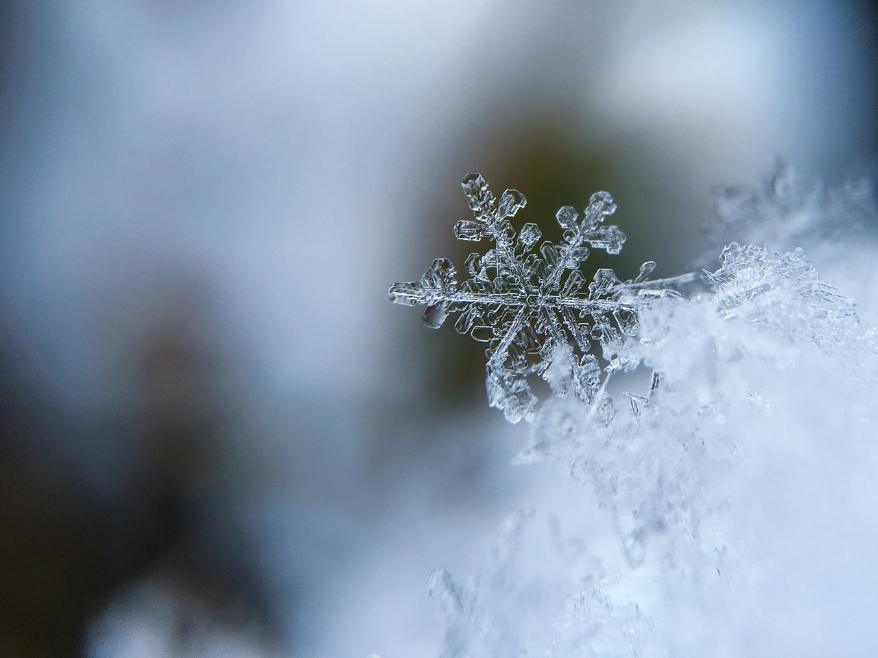 british-army-snowflake-campaign