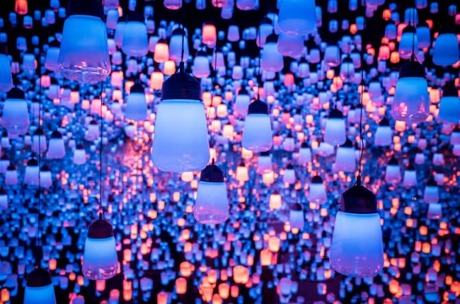 Purple light bulbs