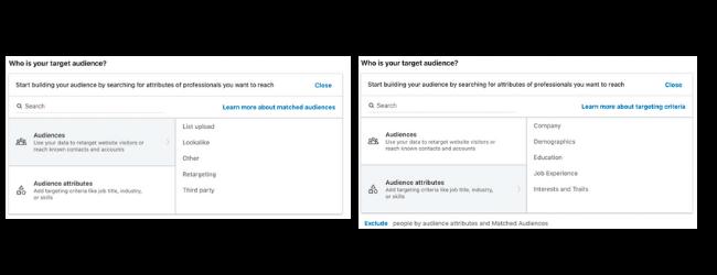 LinkedIn Ad target audience